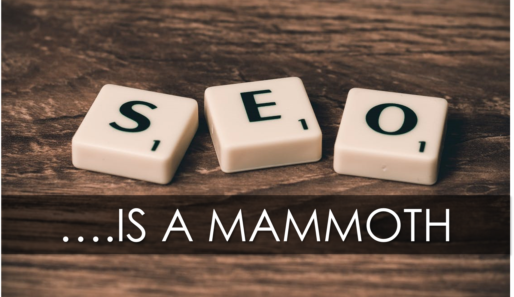 seo mammoth featured